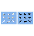 silhouette seagull icon collection vector image