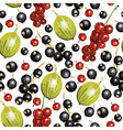 currant berry pattern vector image vector image