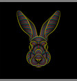 engraving stylized psychedelic rabbit portrait vector image