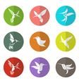 group of hummingbird in the circle vector image vector image