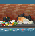 litter in the city vector image vector image