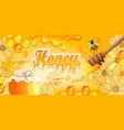 natural floral honey banner vector image