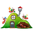 scene with many ants on hill house vector image vector image