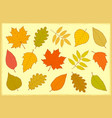set of hand drawn isolated autumn leaves vector image vector image