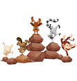 Animals and rocks vector image vector image
