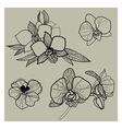 flower set 01 vector image