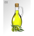 olive branch and olive oil bottle isolated on vector image vector image