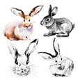 Set of Easter rabbits vector image