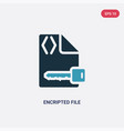 two color encripted file icon from programming vector image vector image