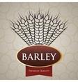 Barley design vector image