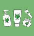 aloe vera skin care vector image vector image