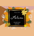 autumn banner with hand writing text and leaf vector image