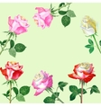 Background with red roses-05 vector image vector image