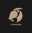 Capricorn Horoscope Icon vector image