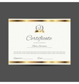 certificate with golden elements vector image
