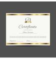 certificate with golden elements vector image