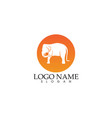 elephant logo and symbols template app vector image vector image