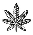 a black and white a cannabis leaf vector image
