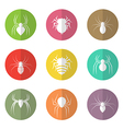 group spider in circle vector image vector image