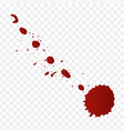 Realistic blood splatters and blood drops set
