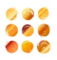 set of golden grunge hand-drawn round spots vector image