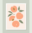 stylish cover design with peach fruits vector image