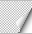 transparent paper with lower right curl vector image vector image