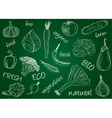 vegetables doodles school board vector image vector image