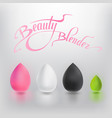 beauty blender vector image vector image