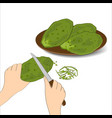 edible green cactus leaves or nopales on white vector image vector image