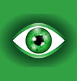 green realistic eyeball vector image