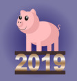 pig 2019 vector image vector image