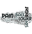 z back pain lower right side text word cloud vector image vector image