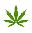 marijuana or cannabis leaf icon logo vector image vector image
