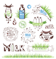 Milk products badges and labels vector image vector image