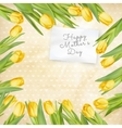 Mothers Day poster EPS 10 vector image vector image