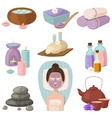 Spa procedure icons vector image