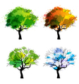 Trees of four seasons vector image vector image