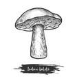 vintage sketch iodine bolete or forest mushroom vector image vector image
