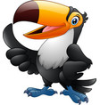 cartoon funny toucan giving thumb up vector image vector image