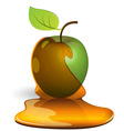 green apple in honey vector image vector image