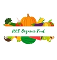 Organic fruits and vegetables template Healthy vector image vector image