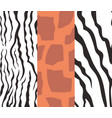 set animalistic skin seamless patterns vector image vector image