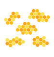 set icons honeycomb isolated vector image