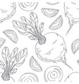 hand drawn seamless pattern with beetroot vector image