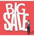 Big sale poster design vector image
