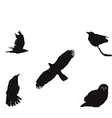 birdset vector image vector image