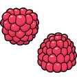 cartoon doodle raspberry vector image vector image