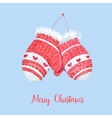 Cute knitted mittens vector image