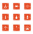 denomination icons set grunge style vector image vector image
